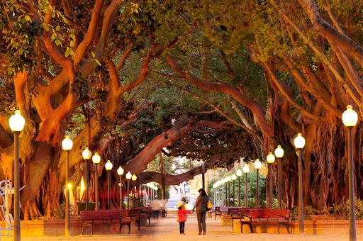 Parque Canalejas Alicante. Descubre Alicante: mucho más que playa